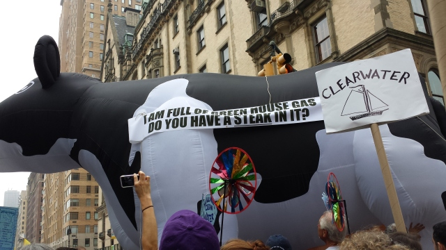 "There was some topical self-promotional flair, though not quite as grand as the Macy's balloons.  A documentary, ""Cowspiracy,"" wanted everyone to get their message."